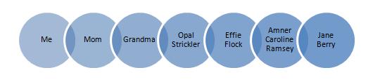 Sierra Excel File