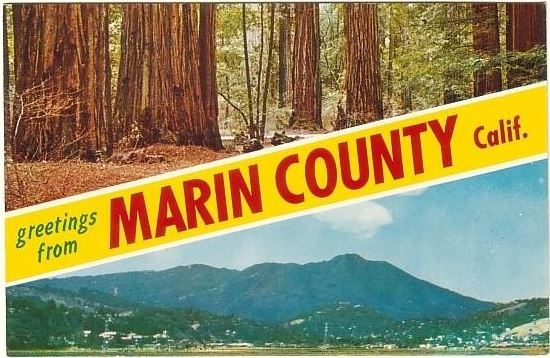 Lost Marin Facebook Page Photo